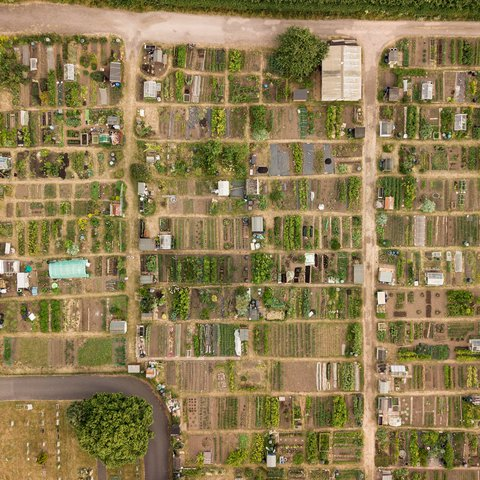 Bird's Eye view of Allotments