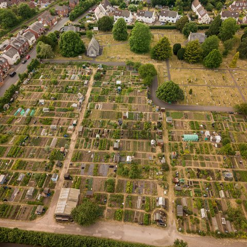 Aerial View of Allotments